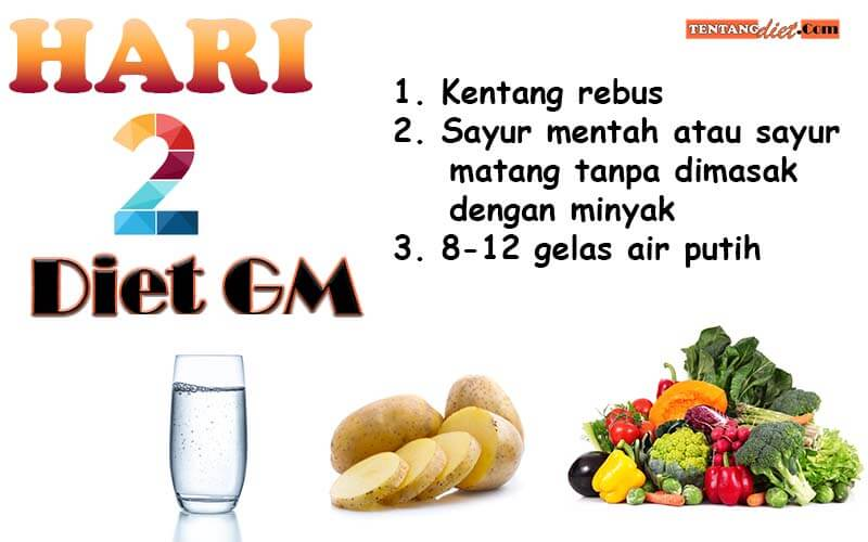 Diet GM Hari 2